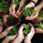 Bufete Sempere es especialista en Responsabilidad Civil contra los detlitos al Medio Ambiente